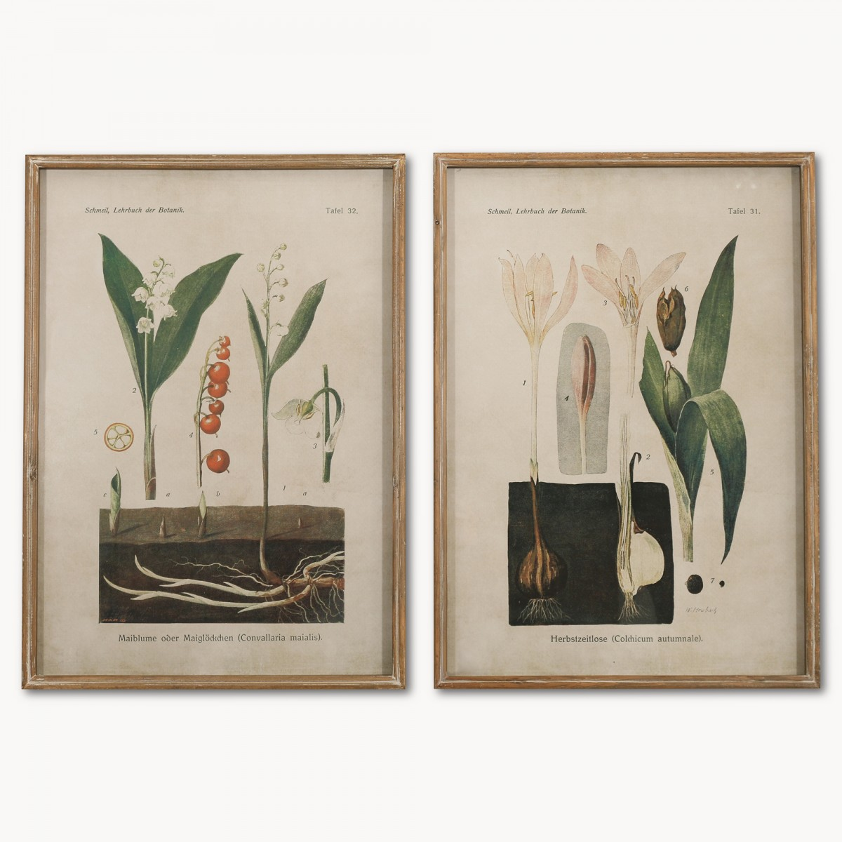 Vintage garden ideas and inspiration. Oldhouseintheshires. #vintagegarden #botanicalprints