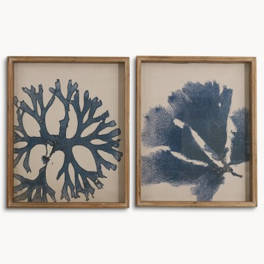 Brookby Set Of 2 Framed Coral Wall Art | One World