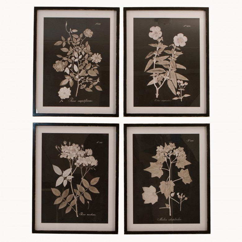 Brookby Set of 4 Framed Midnight Botanical Wall Art | One ...
