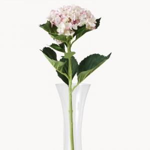 sunbury lavender pink flower-hydrangea