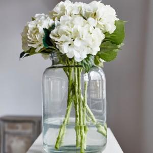sunbury white flower hydrangea