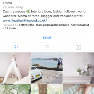 Little Wood Life Instagram profile